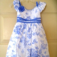 Biscotti Blue Toile Dress