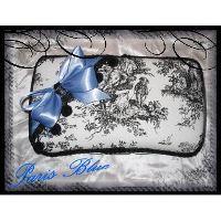 Paris Blue Case