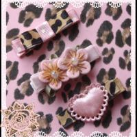 Pink Leopard Trio Clips